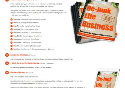 Sales Page Design – Dejunk Your Life and Business (Rock Your Star Power)